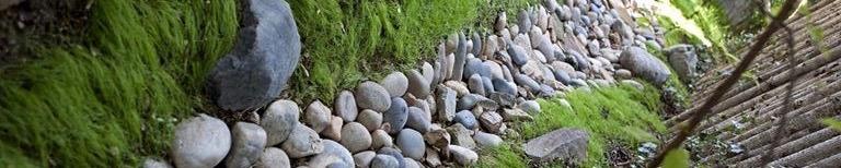 rocky drainage